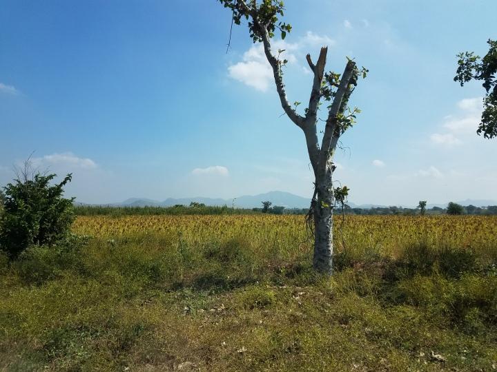 Hills of Karnataka